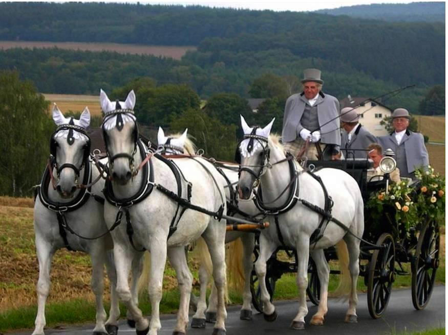 Hochzeitskutsche 2009